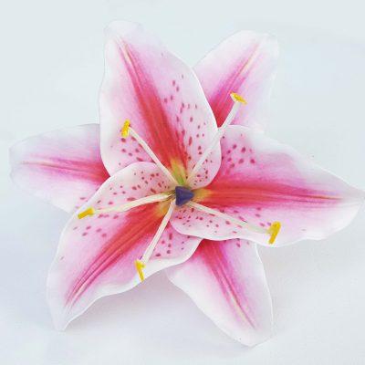 lil14 pink