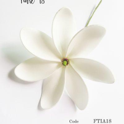 tiare18 addinfo