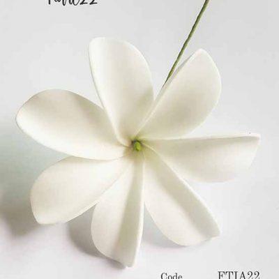 tiare22 addinfo