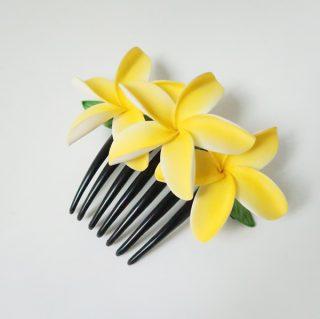 hair comb e1561187240225